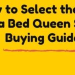 How to buy the best sofa bed