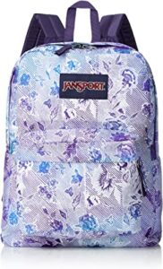 JanSport backpack for laptop and documents